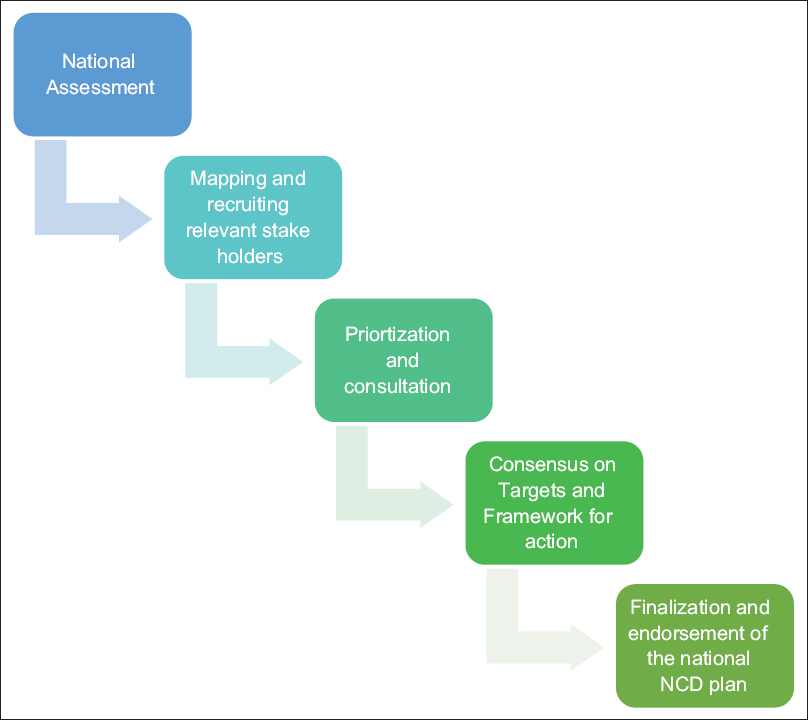 Figure 1: Pathway for developing Noncommunicable Disease Action Plan 2017–2021